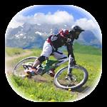 Downhill Champion Icon
