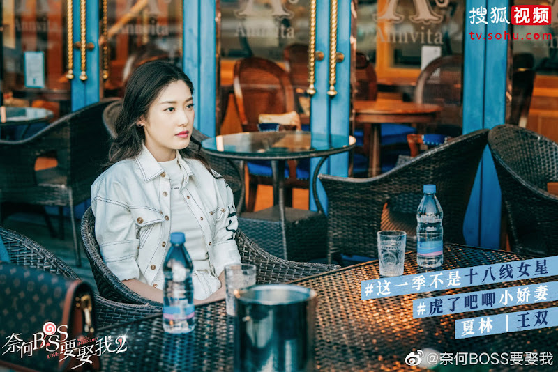 Well-Intended Love 2 China Web Drama