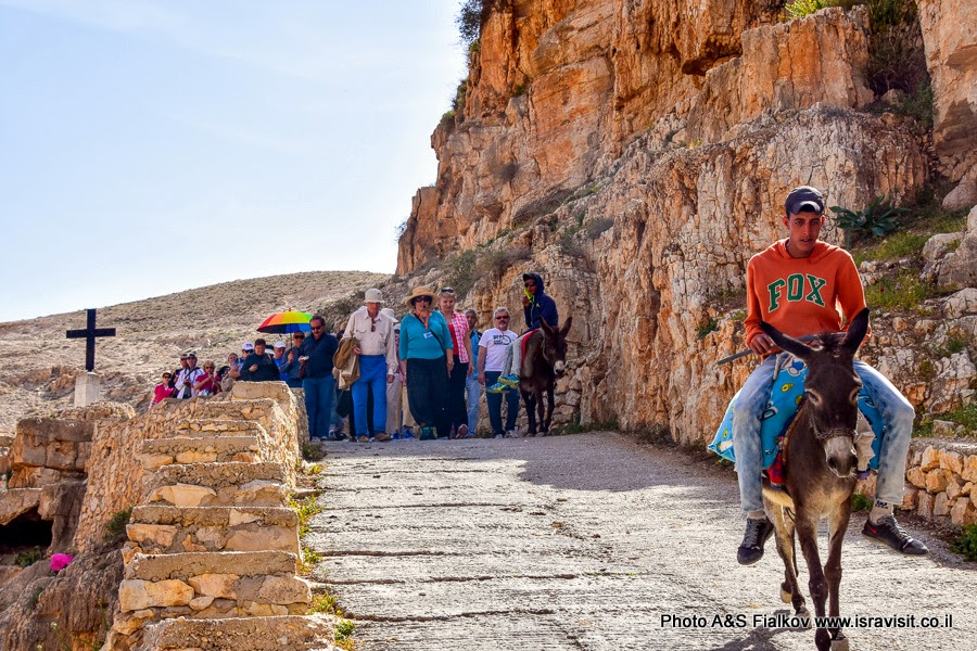 Экскурсия в Вади Кельт с гидом в Израиле Светланой Фиалковой.