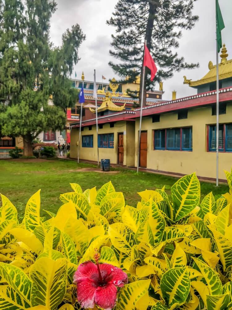 namdroling+monastery+bangalore+to+coorg