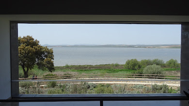 Photo: How's this for an air conditioned panoramic window?