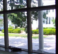Photo: View from Buckman House on Ann Street - Leecraft House across street
