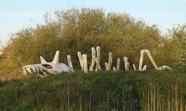 Photo: Skelet van de Griedosaurus