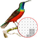 Bird Color By Number - Pixel Art icon