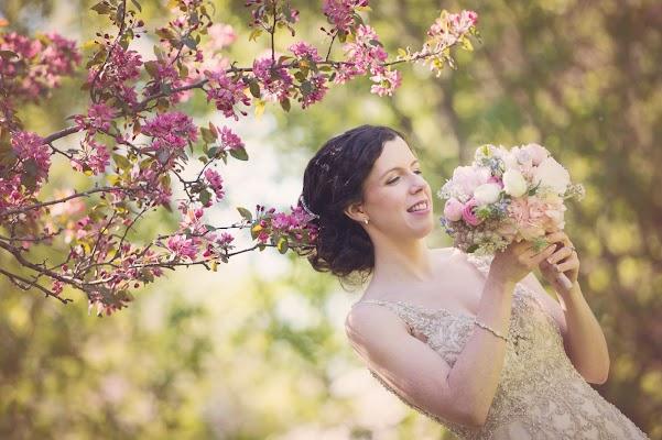 Wedding photographer Annemarie Gruden (annemariegruden). Photo of 04.07.2017