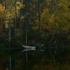The Boat  by Alf Winnaess - Uncategorized All Uncategorized