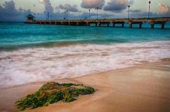 Photo: In the Morning Sun  Photo from my last morning in Barbados. I already want to start planning my next trip, especially now that we have this dreary weather in New York! Any suggestions?  Happy Wednesday!!  #Barbados  #landscapephotography  #seascapephotography