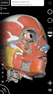 App Muscle   Skeleton - 3D Atlas of Anatomy APK for Windows Phone