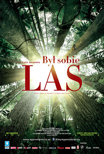 Przód ulotki filmu 'Był Sobie Las'