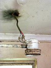Photo: elektrischer Duschkopf