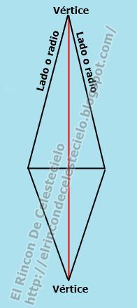 Nombre de las partes de la pinza vertical