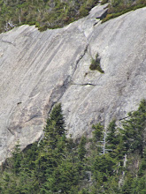 Photo: Lower portion of the crack ends at the treeline. We traversed left and up at the horizontal overlap.