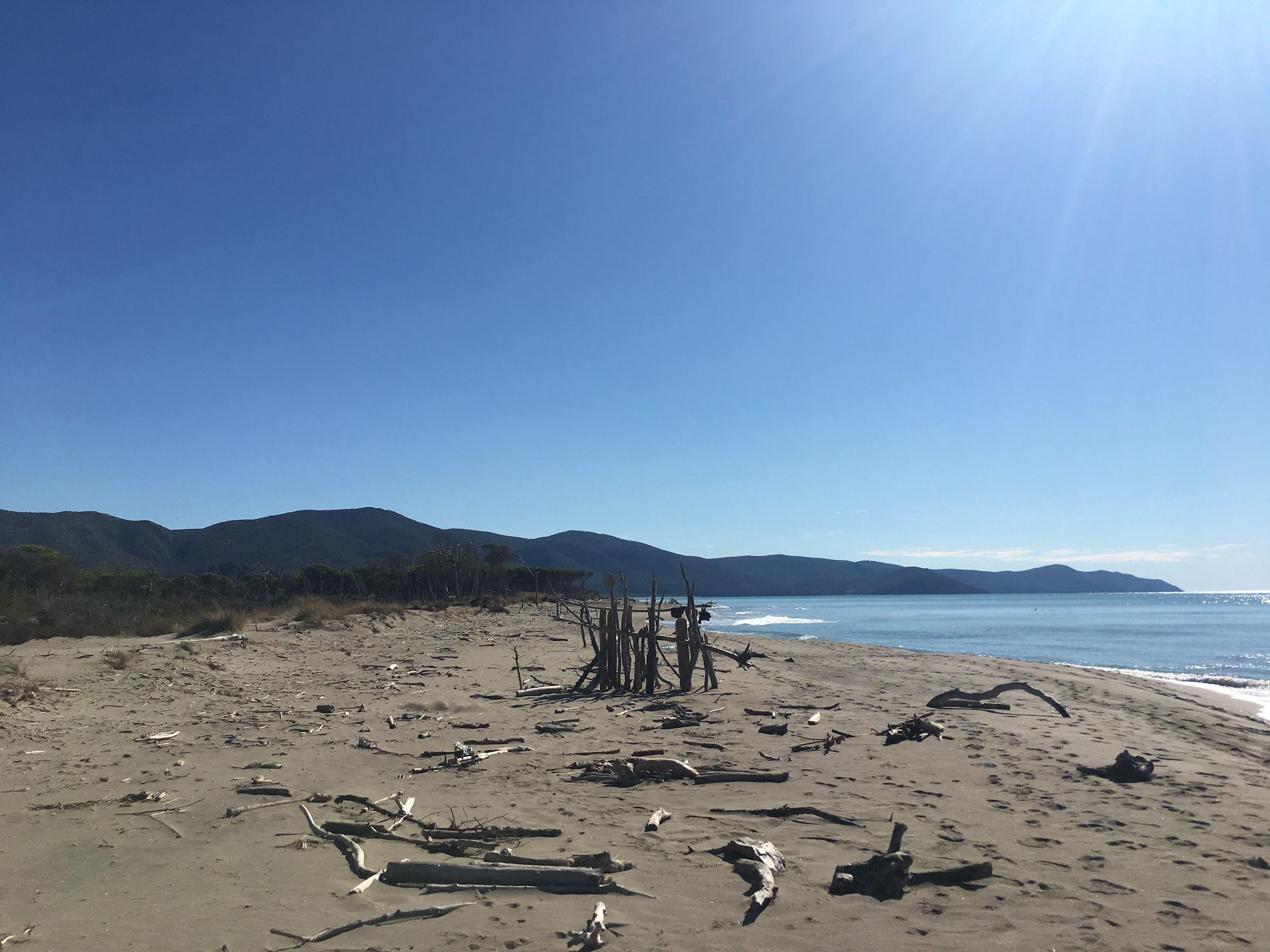 Spiaggia Marina di Alberese,, Parco naturale della Maremma,
