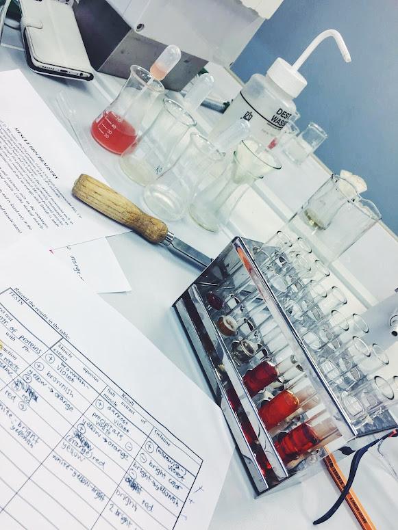 biokemia labratyöt