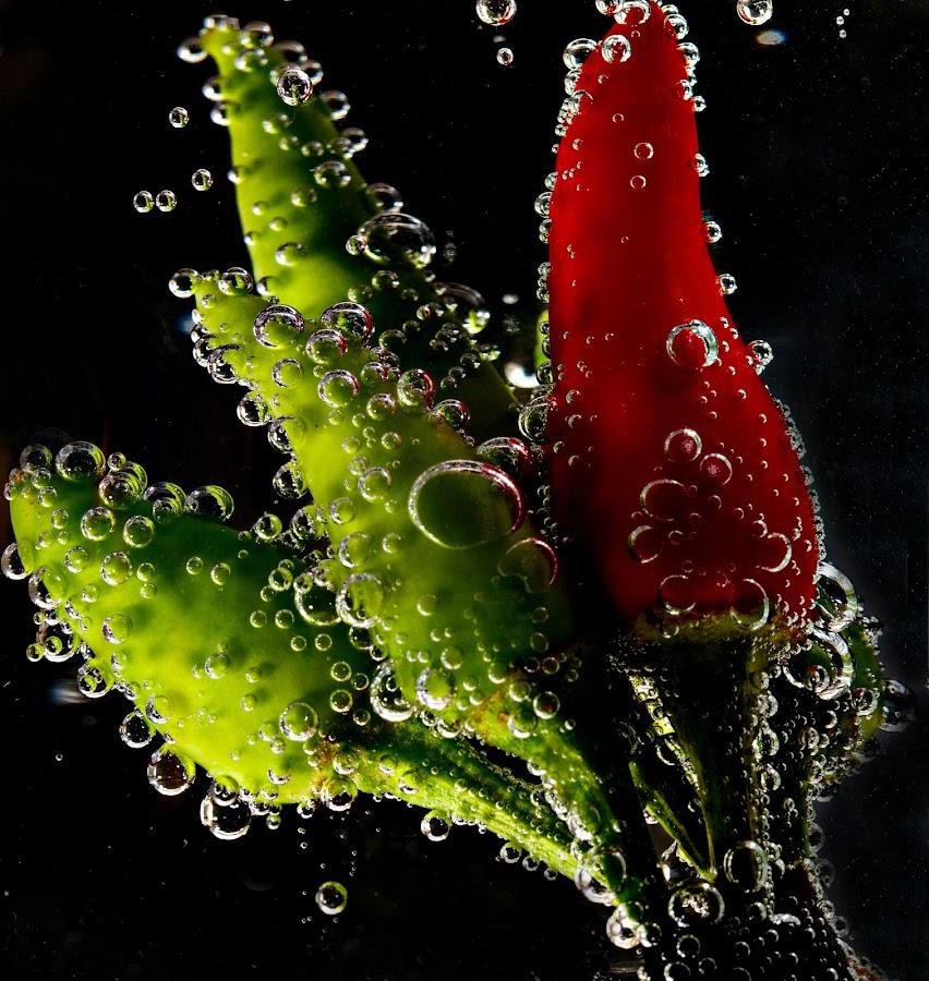 Mirchi's by Senthil Damodaran - Food & Drink Fruits & Vegetables ( mirchi, chilli, pwcvegetables, veggie, soda )