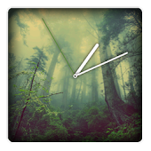 Foggy Forest Watch Face