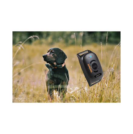 Wehunt GPS Dog tracker II