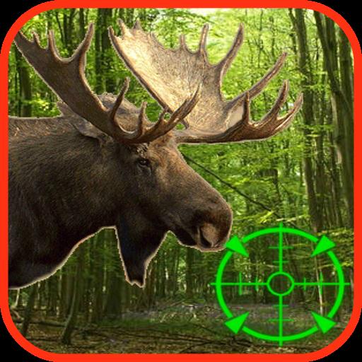 Moose Hunting Calls 運動 App LOGO-硬是要APP
