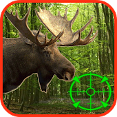 Download Moose Hunting Calls Free