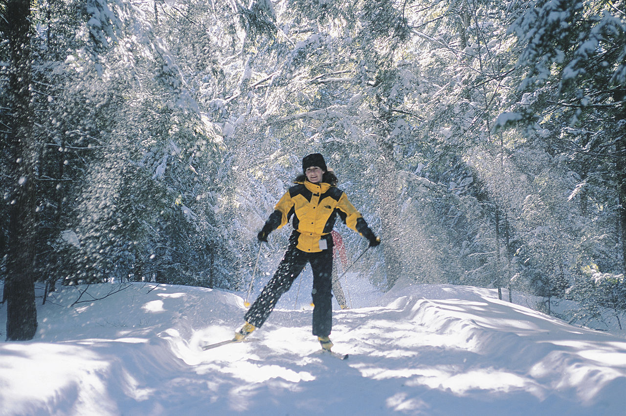 1280px-Cross-Country_skiing_in_Gatineau_Park.jpg