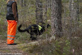 Photo: Vilma og Aina runderer