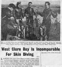 "Photo: ""Clare Champion"" headlines Diving."