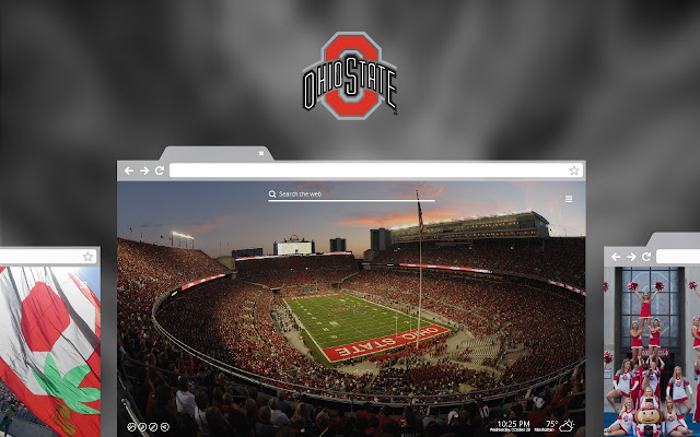OFFICIAL Ohio State University New Tab Theme