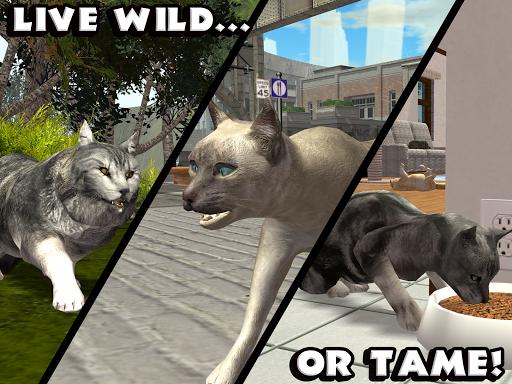 Download Ultimate Cat Simulator MOD APK 8