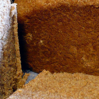 Basic 100% Whole Wheat Bread