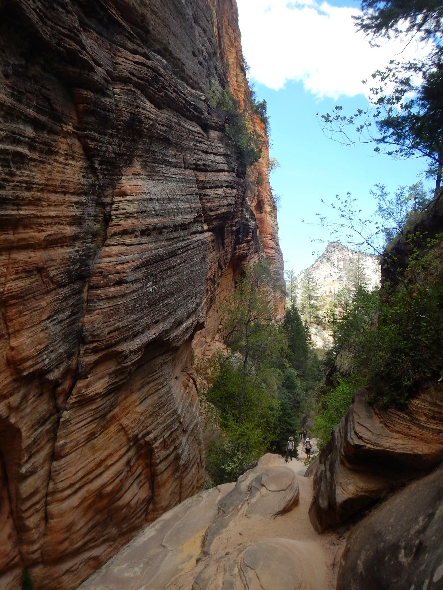 Photo: Textured walls in Hidden Canyon