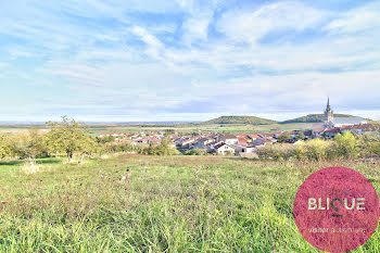 terrain à Bruley (54)