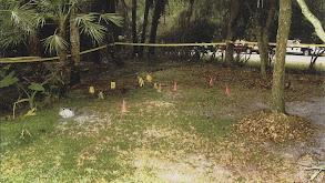 Hog Trail Murders thumbnail