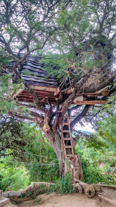 Our treehouse in Jaguar Azul in Samaipata while traveling in Bolivia