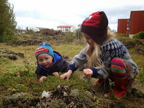 Photo: í hrauninu