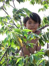 Photo: Cambodian child