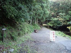 ここから林道へ