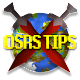Tips & Tricks for Oldschool Runescape for PC-Windows 7,8,10 and Mac