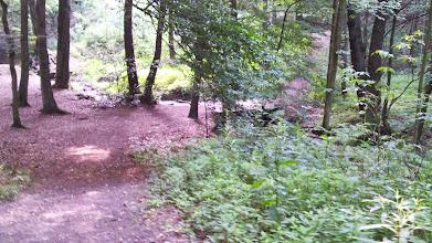 Photo: Holzbrücke im Naturschutzgebiet ,Funckenhauser Bachtal'. Unterhalb davon (hier: am linken Bildrand) gibt es noch einen außer Betrieb gesetzten Staudamm, von dem aus (und über den?) einst ein Pfad an einer Haldenlandschaft vorbei zur Wolfskuhle führte.