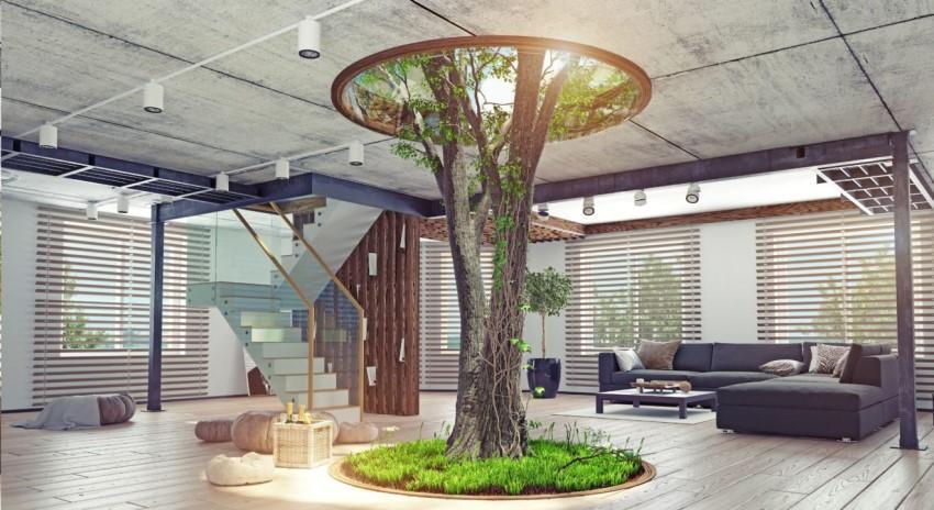 Trồng cây xanh trong nhà giúp mang lại may mắn cho gia chủ mệnh Mộc