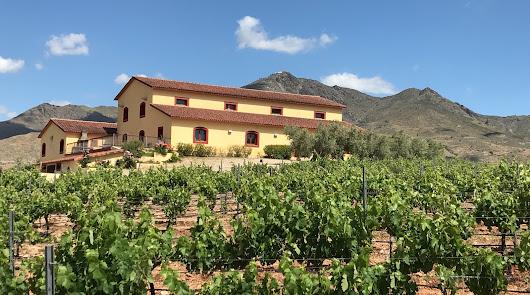 Un vino azul de Almería se cuela en el exigente mercado francés