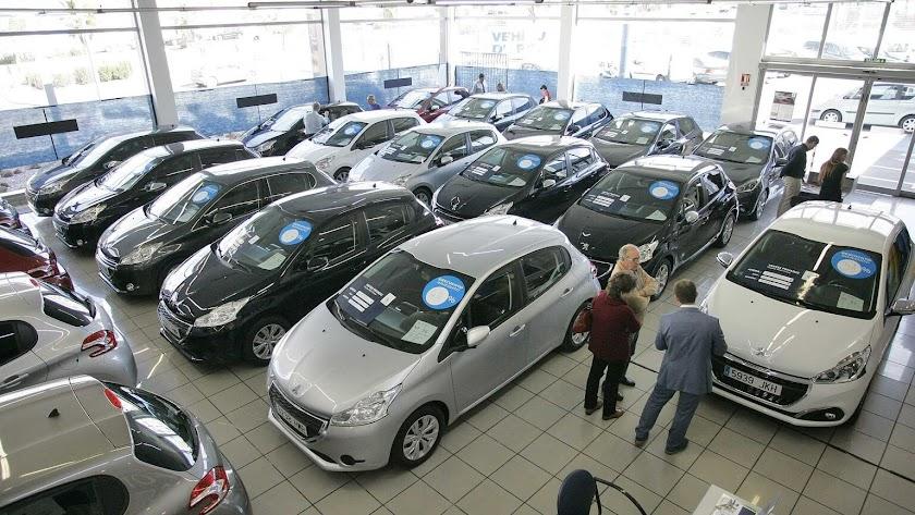 Concesionario de automóviles en la provincia.