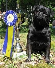 Photo: Swedish Beauty Champion !