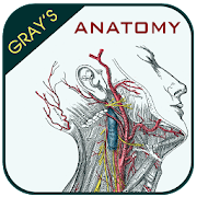App Gray's Anatomy - Atlas APK for Windows Phone