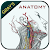 Gray\'s Anatomy - Atlas file APK for Gaming PC/PS3/PS4 Smart TV