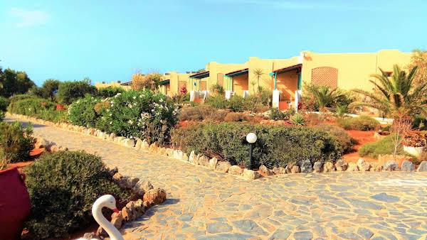 Zorbas Beach Village Hotel