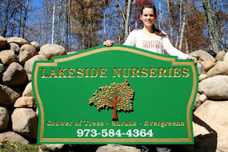 Photo: Nursery Sign in New Jersey, Carved in 3D by Melissa Jones. See more wood carvings @ at http://www.nicecarvings.com