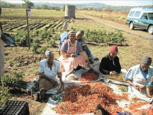 TOUGH LIFE: Women in rural areas need assistance.