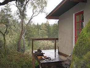 Photo: Guest cottage in the trees (straw-bale & wood)