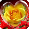 Roses and Flowers APK
