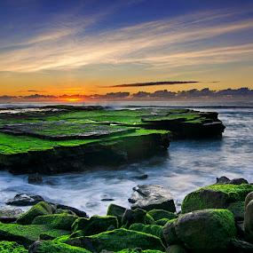 Sunrise at Turimetta by Anton Subiyanto - Landscapes Beaches